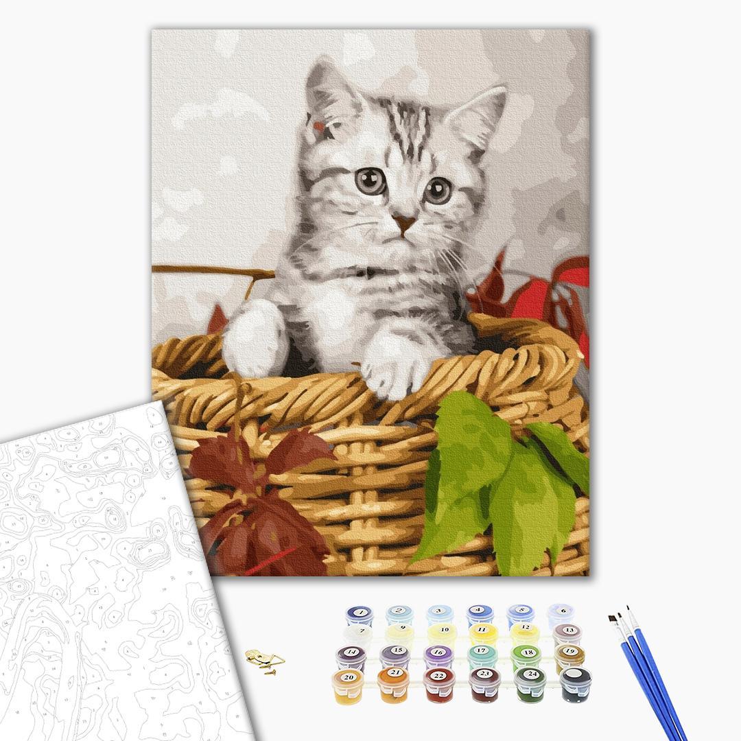 Картина по номерам Животные, птицы и рыбы - Кошеня в кошику