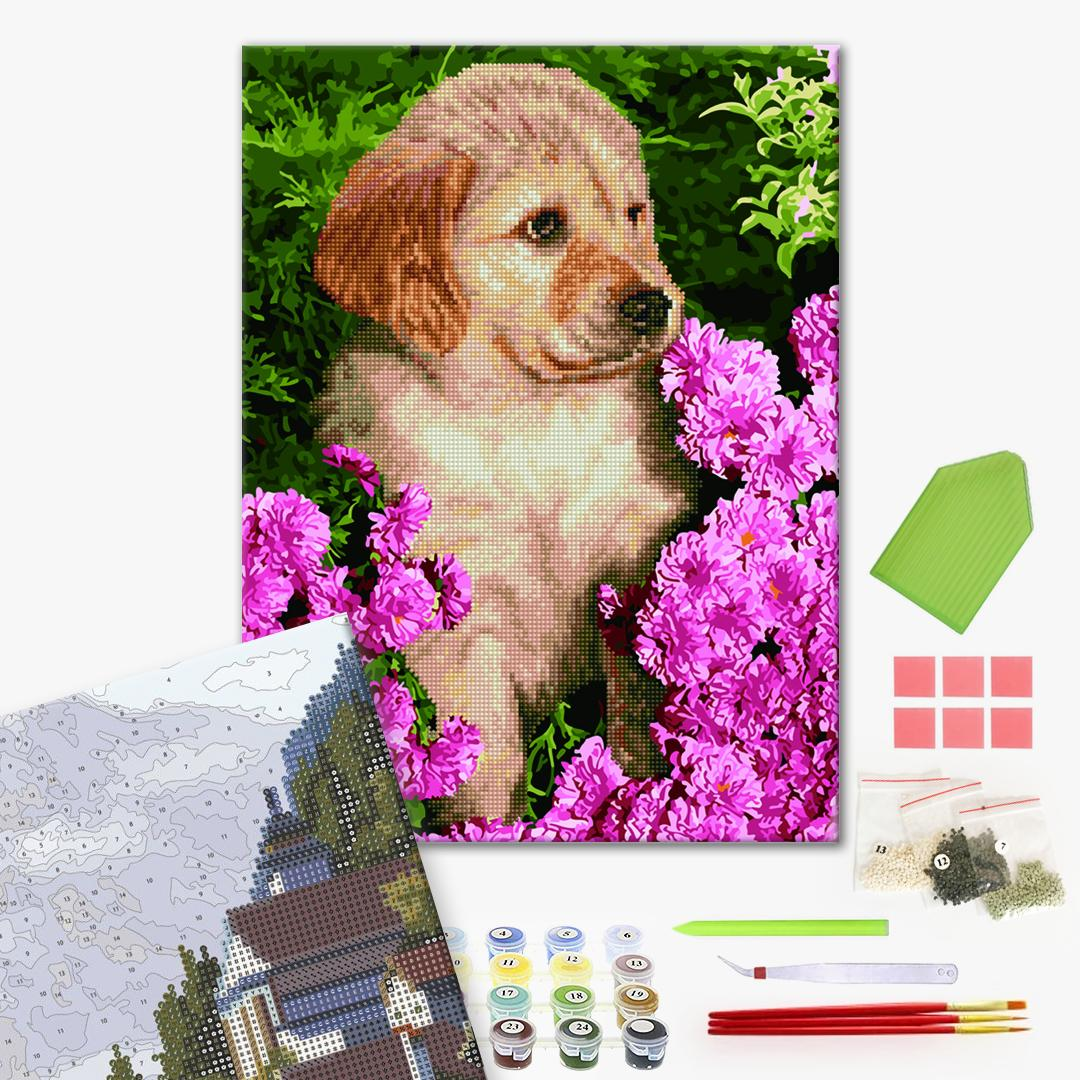 Алмазные картины-раскраски - Цуценя лабрадора в квітах