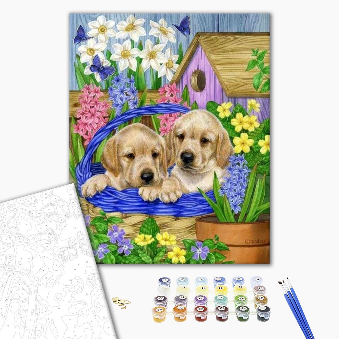 Картина по номерам Животные, птицы и рыбы - Собачки в садовій корзині