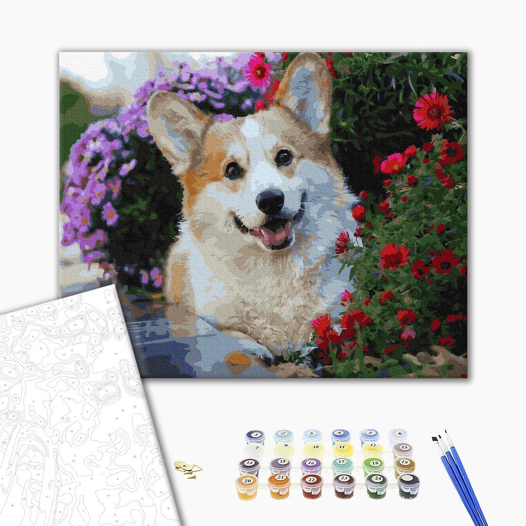 Картина по номерам Животные, птицы и рыбы - Акита в цветах
