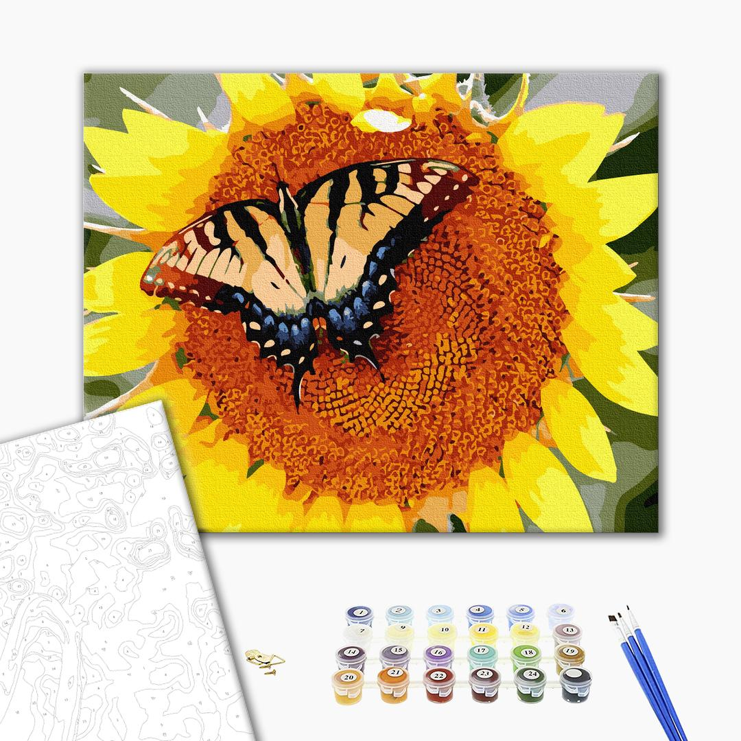 Картина по номерам Цветы - Бабочка на подсолнечнике