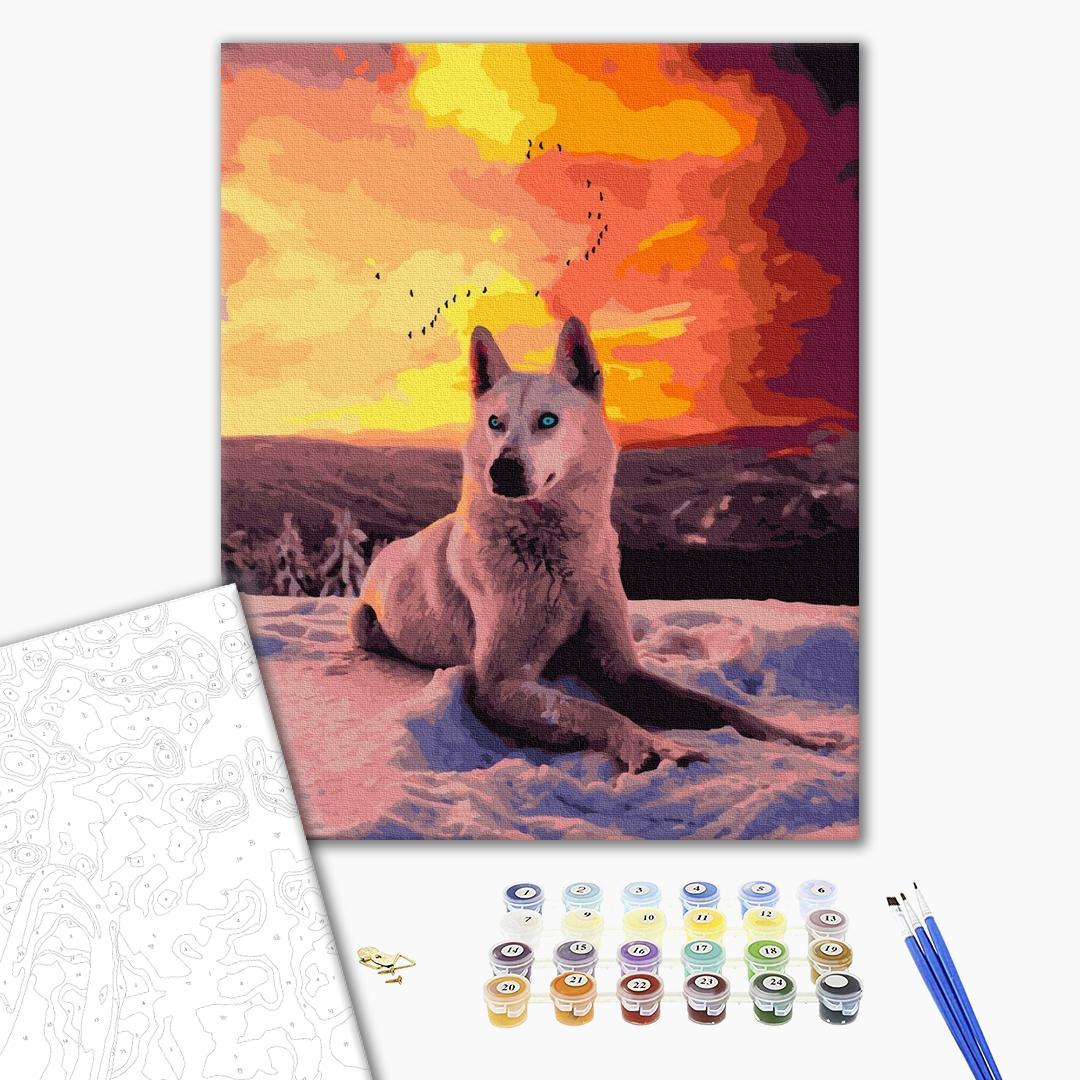 Картина по номерам Животные, птицы и рыбы - Арктический волк