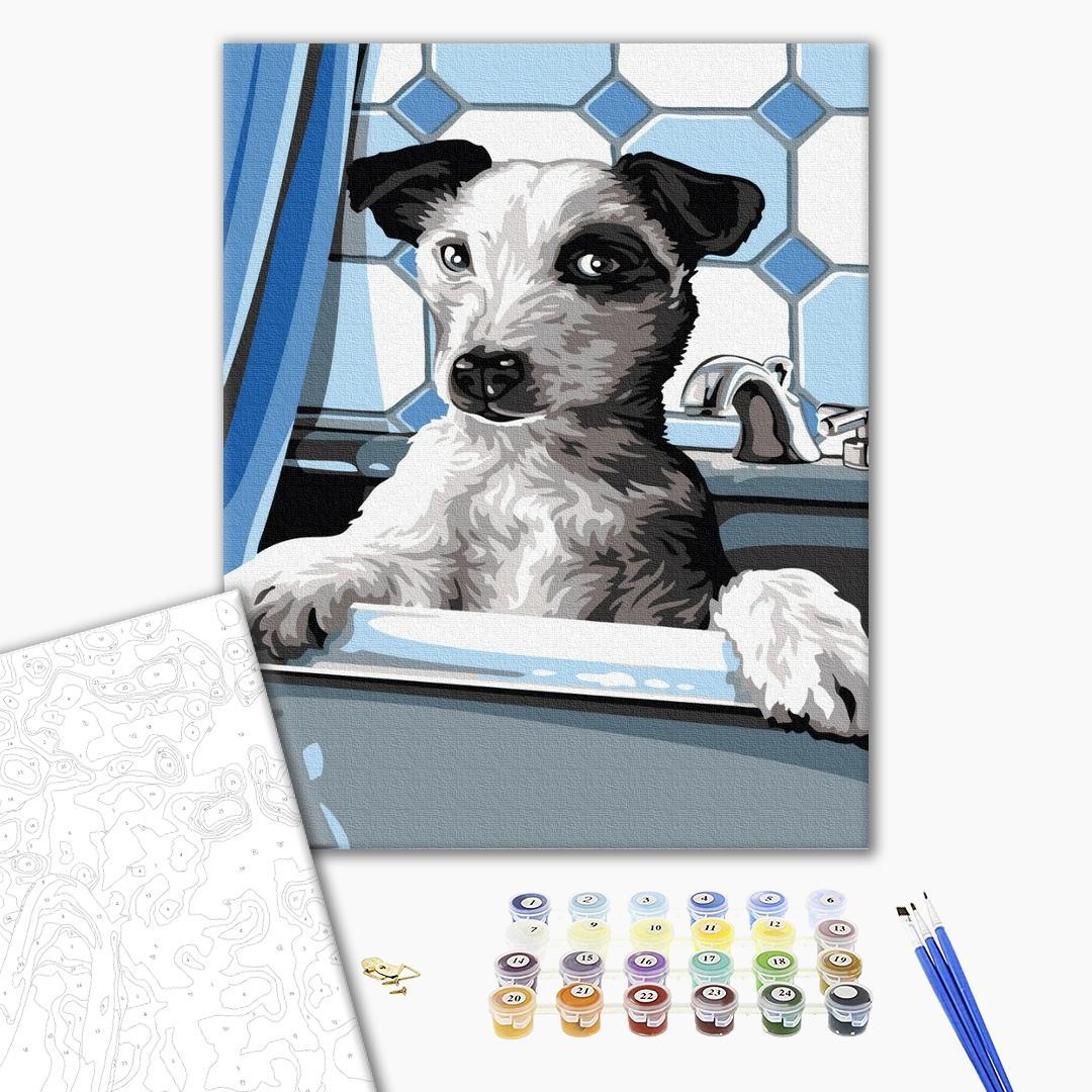 Картина по номерам Животные, птицы и рыбы - Собачка на купанні