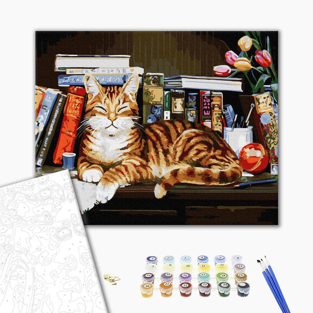 Картина по номерам Животные, птицы и рыбы - Кіт на книжковій полиці