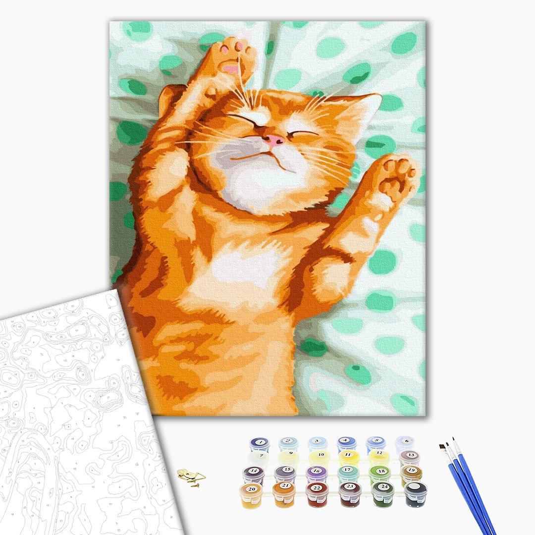Картина по номерам Животные, птицы и рыбы - Котик Рижун