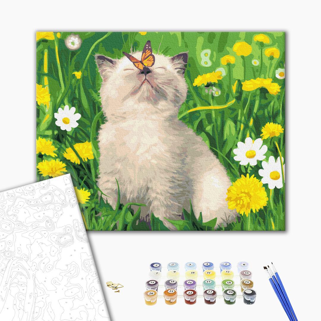 Картина по номерам Животные, птицы и рыбы - Котик с бабочкой на носу