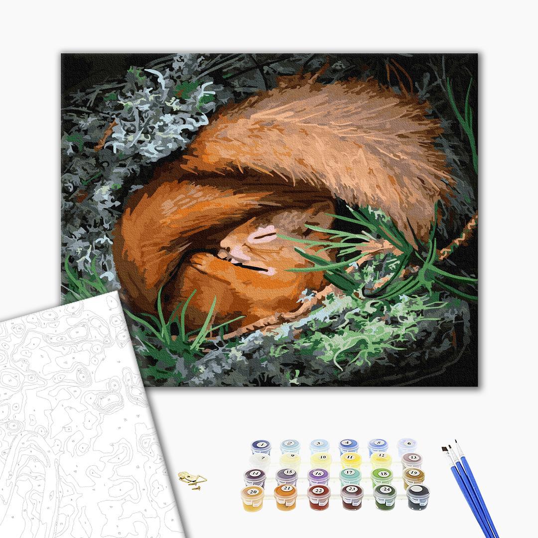 Картина по номерам Животные, птицы и рыбы - Сладкий сон белочки