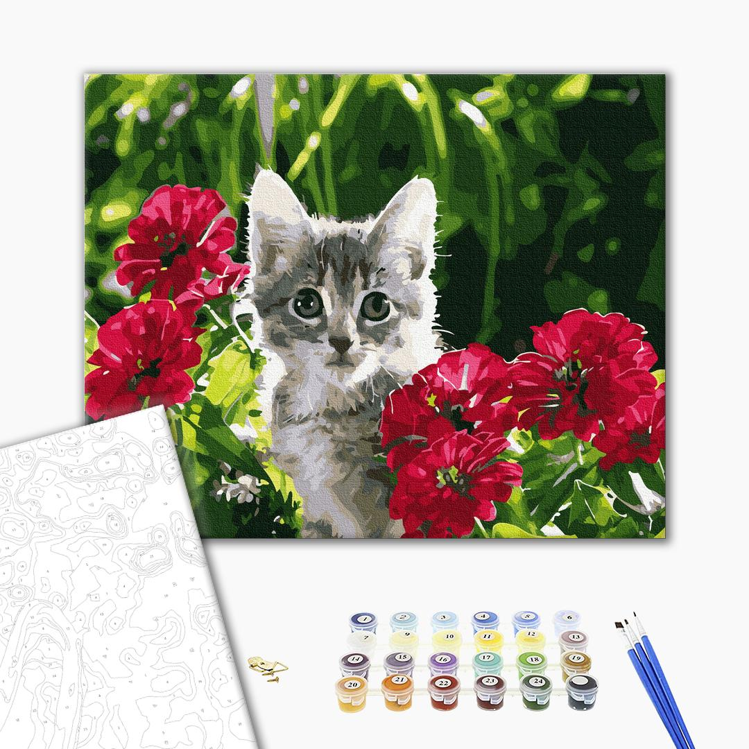 Картина по номерам Животные, птицы и рыбы - Котенок в цветах
