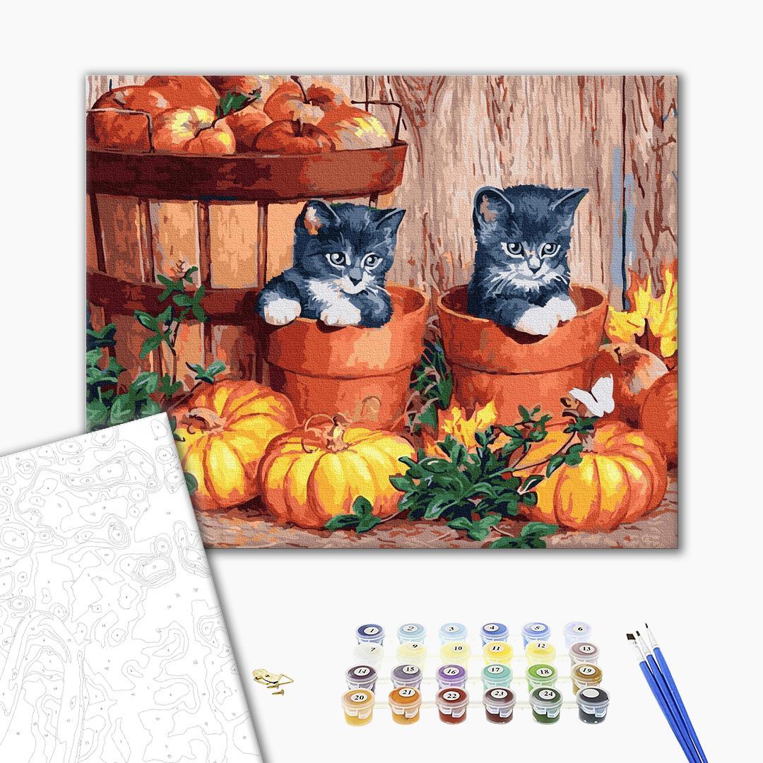 Картина по номерам Животные, птицы и рыбы - Котики в тыквах