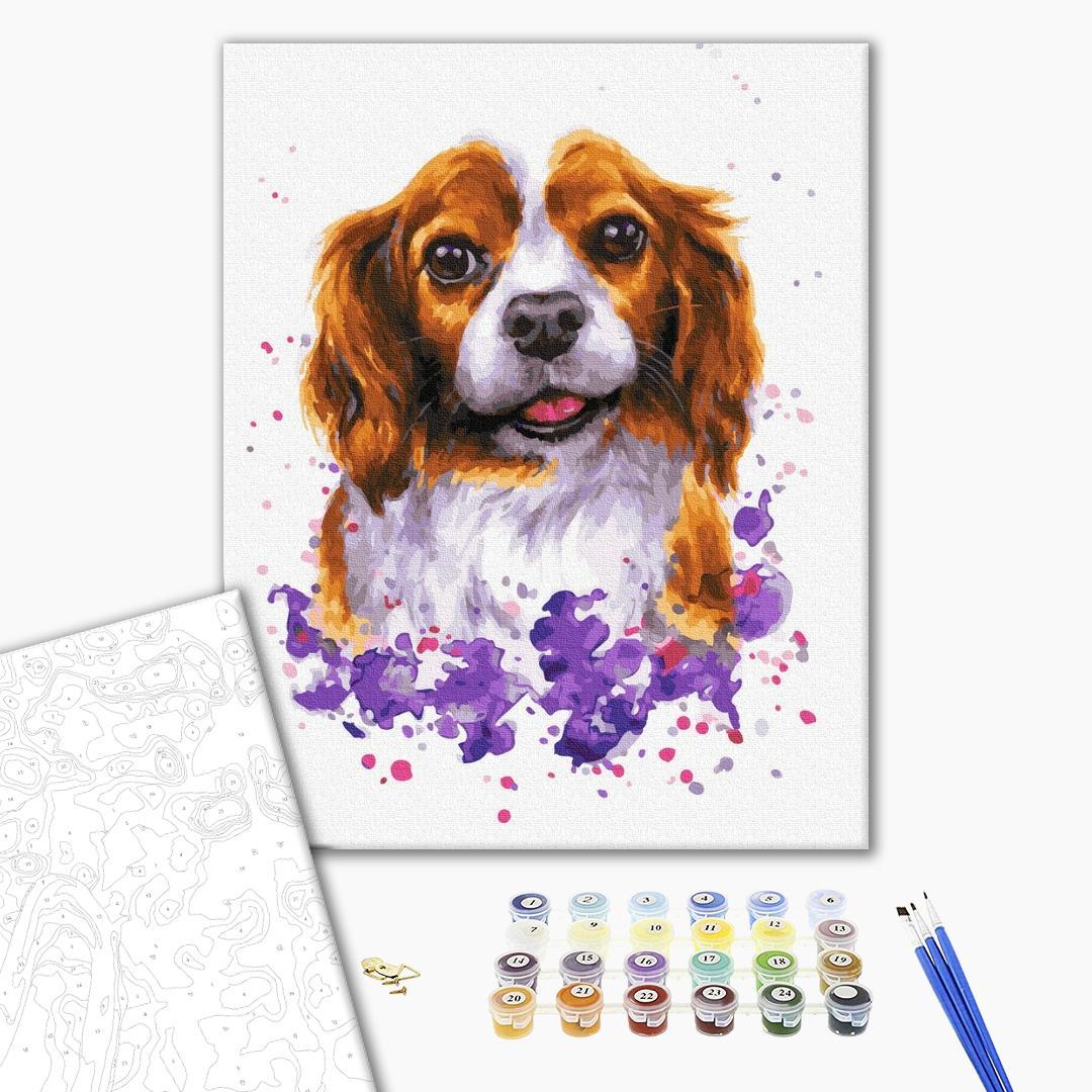 Картина по номерам Животные, птицы и рыбы - Собачка в красках