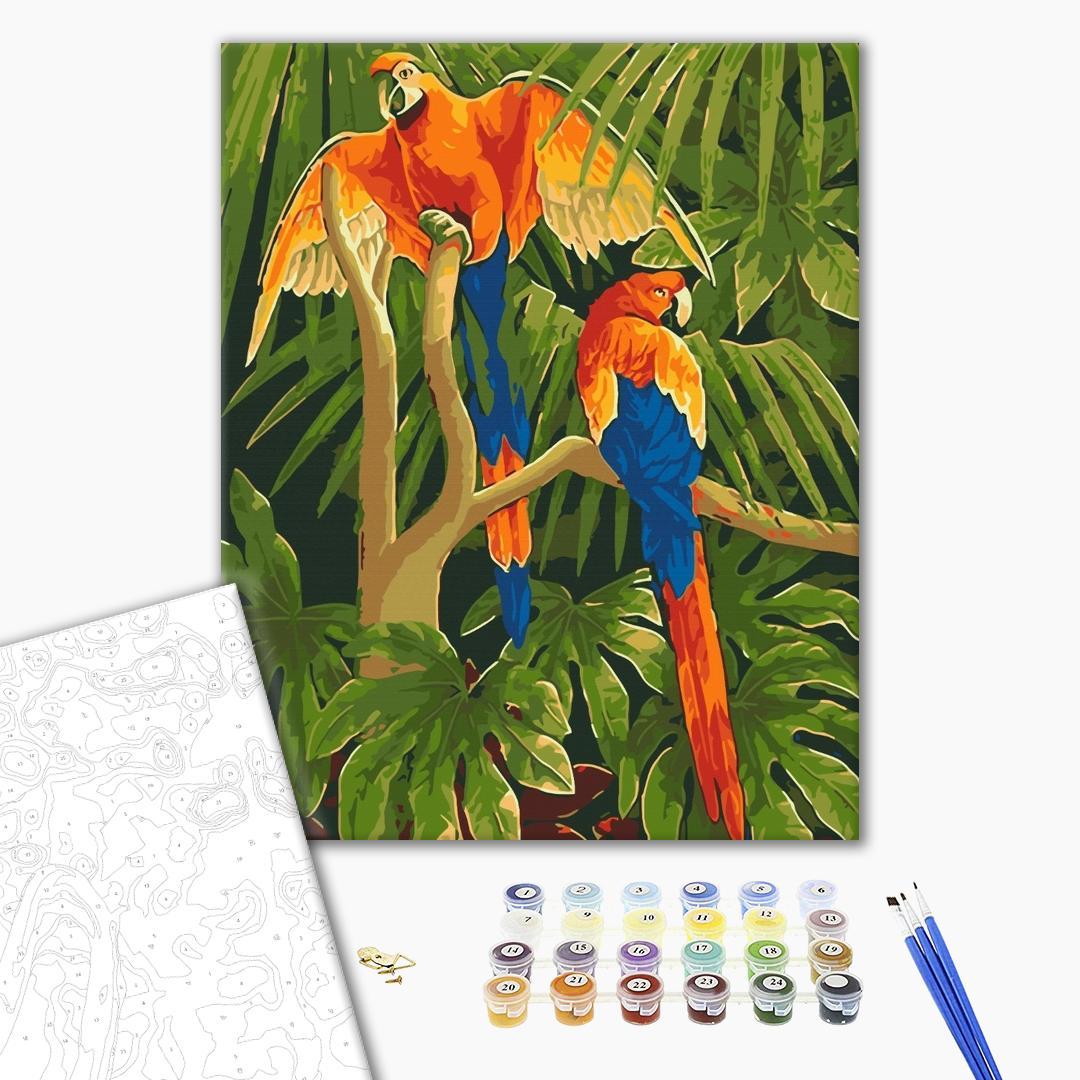 Картина по номерам Животные, птицы и рыбы - Тропические птицы