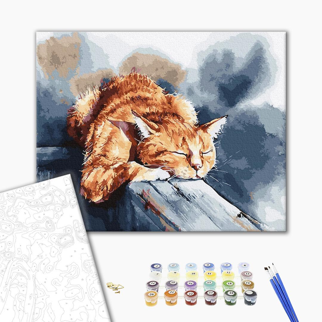 Картина по номерам Животные, птицы и рыбы - Сни котика