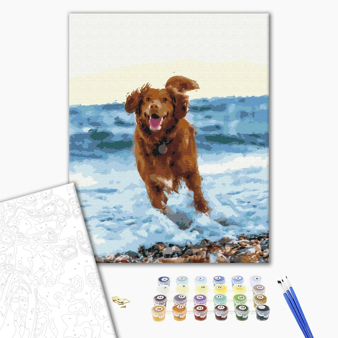 Картина по номерам Животные, птицы и рыбы - Собачка в море