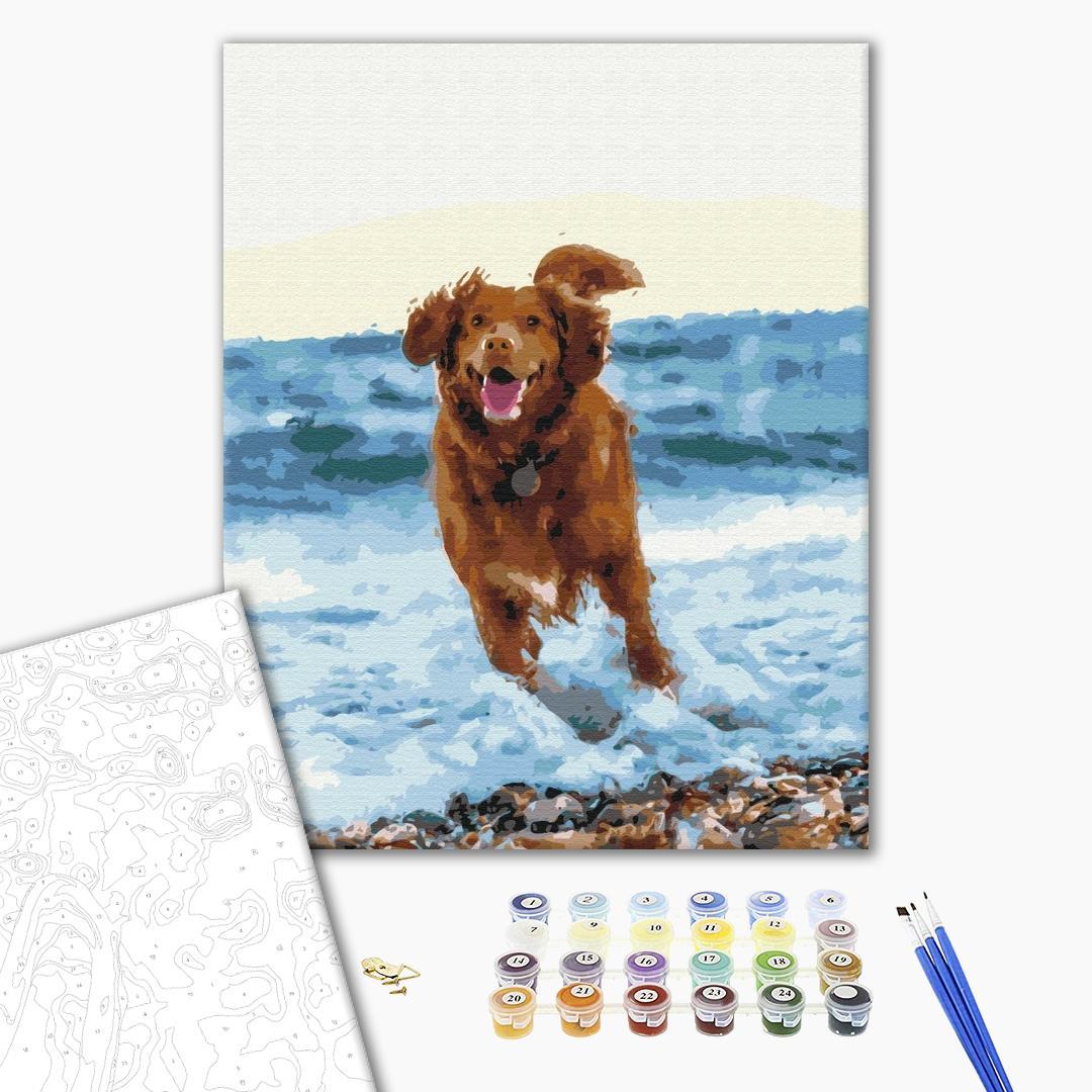 Картина по номерам Животные, птицы и рыбы - Собачка в морі