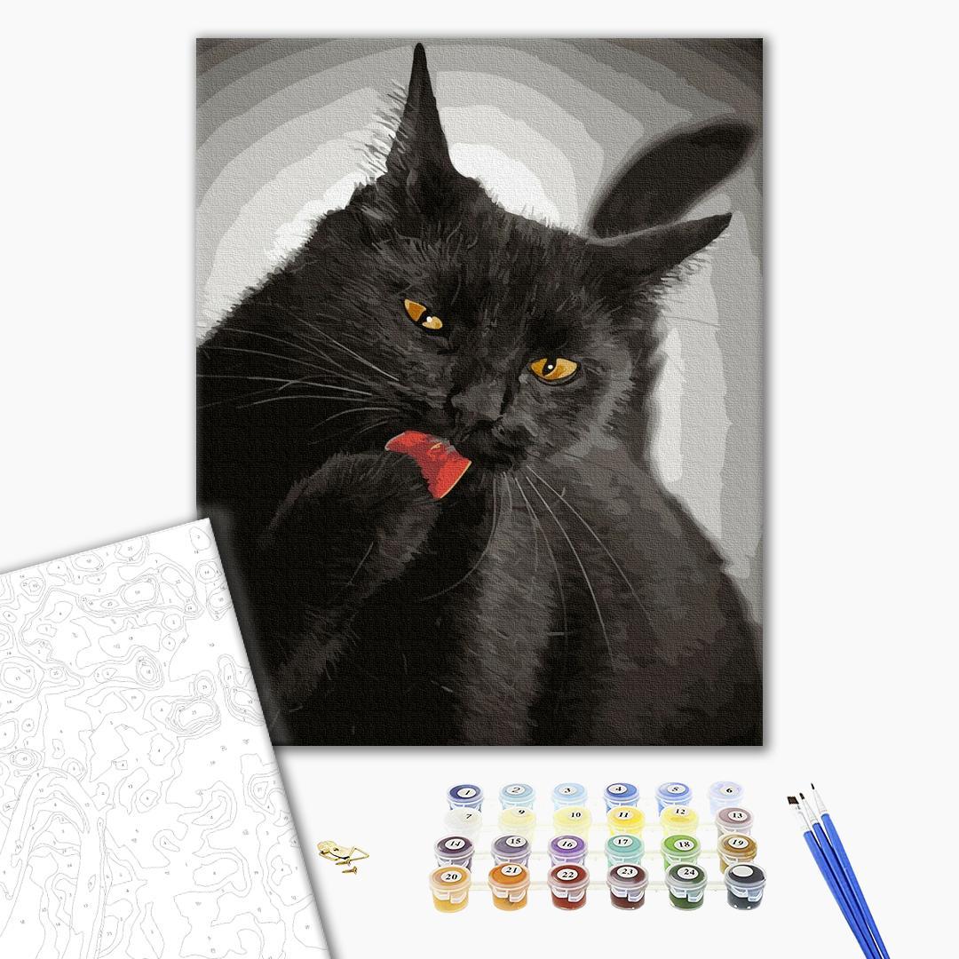 Картина по номерам Животные, птицы и рыбы - Черная кошечка
