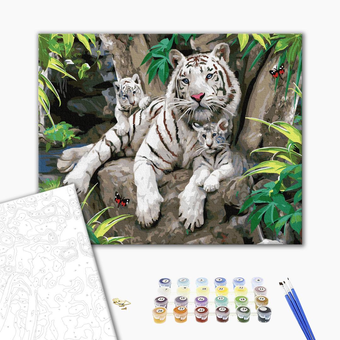 Картина по номерам Животные, птицы и рыбы - Семья белых тигров