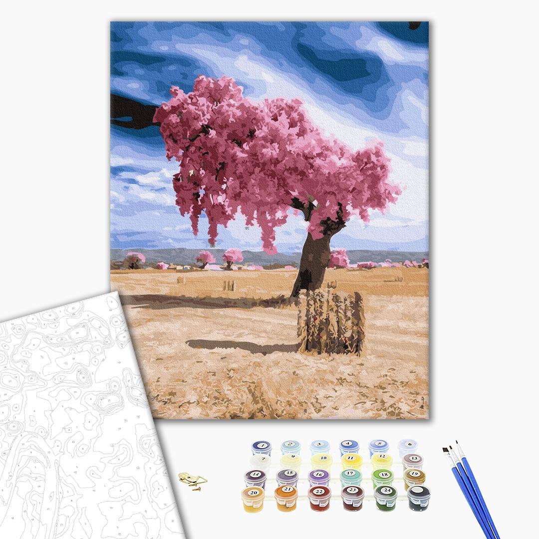 Картина по номерам Пейзажи - Диво в пустелі
