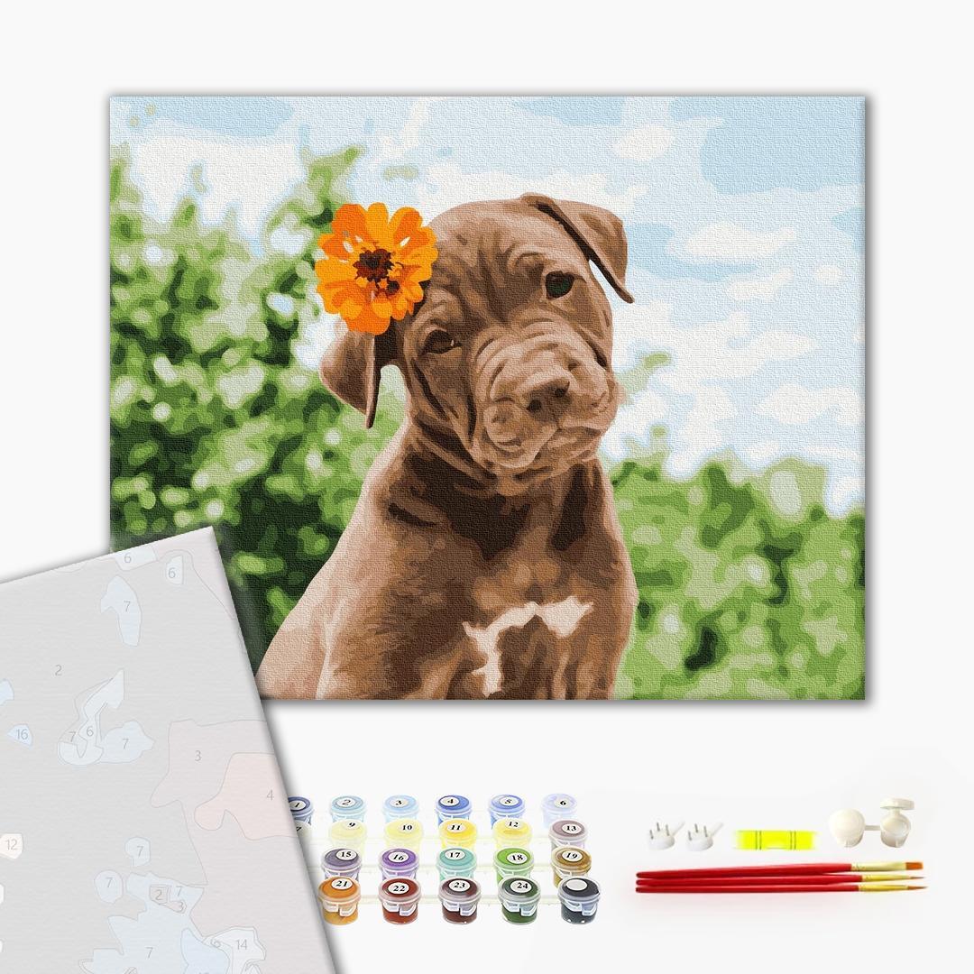 Картина по номерам ПРЕМИУМ картины - Собачка милий романтик