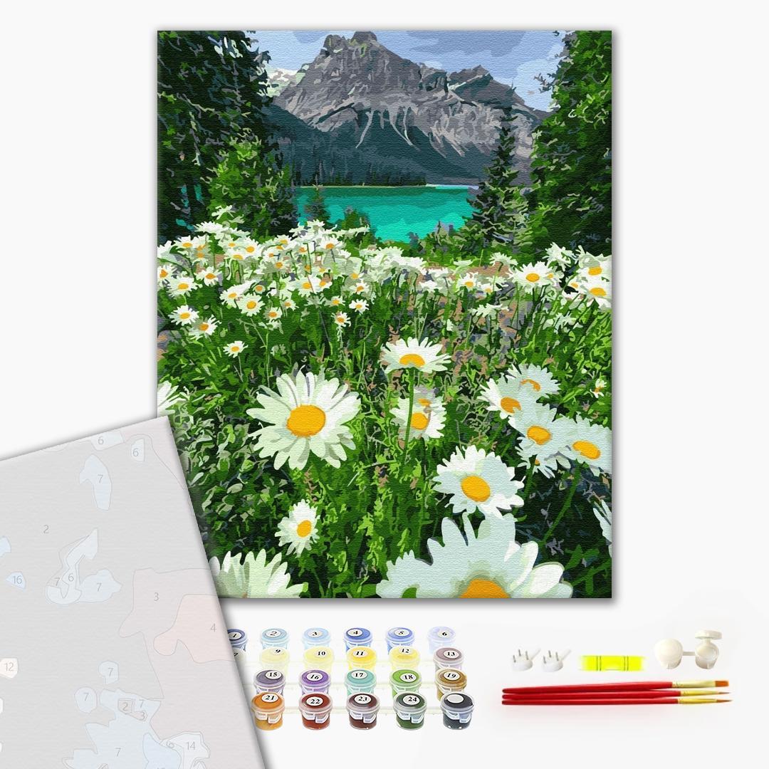 Картина по номерам ПРЕМИУМ картины - Ромашки у гор