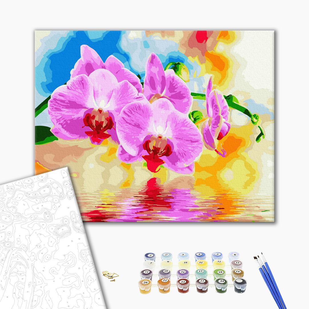 Картина по номерам Цветы - Орхидея